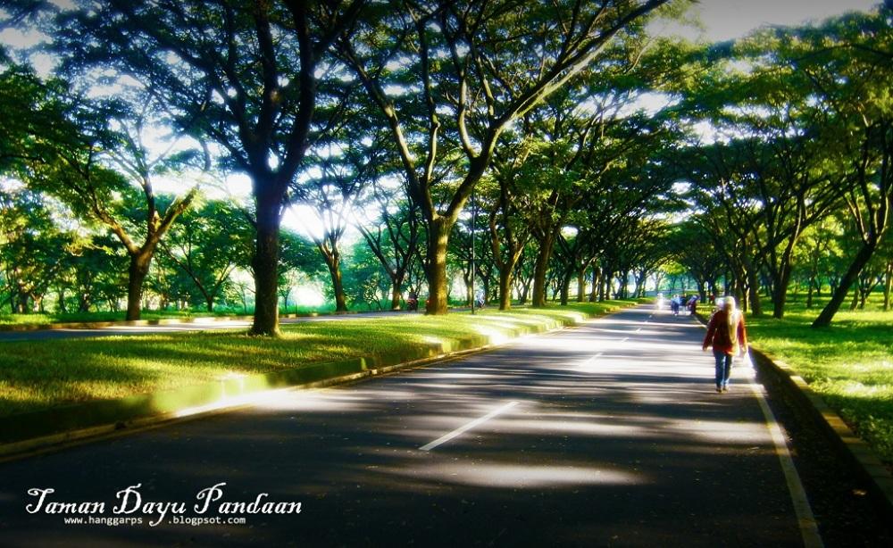 Art of Sun Session 08 - Jogging Sambil Berburu Foto di Taman Dayu (1/6)