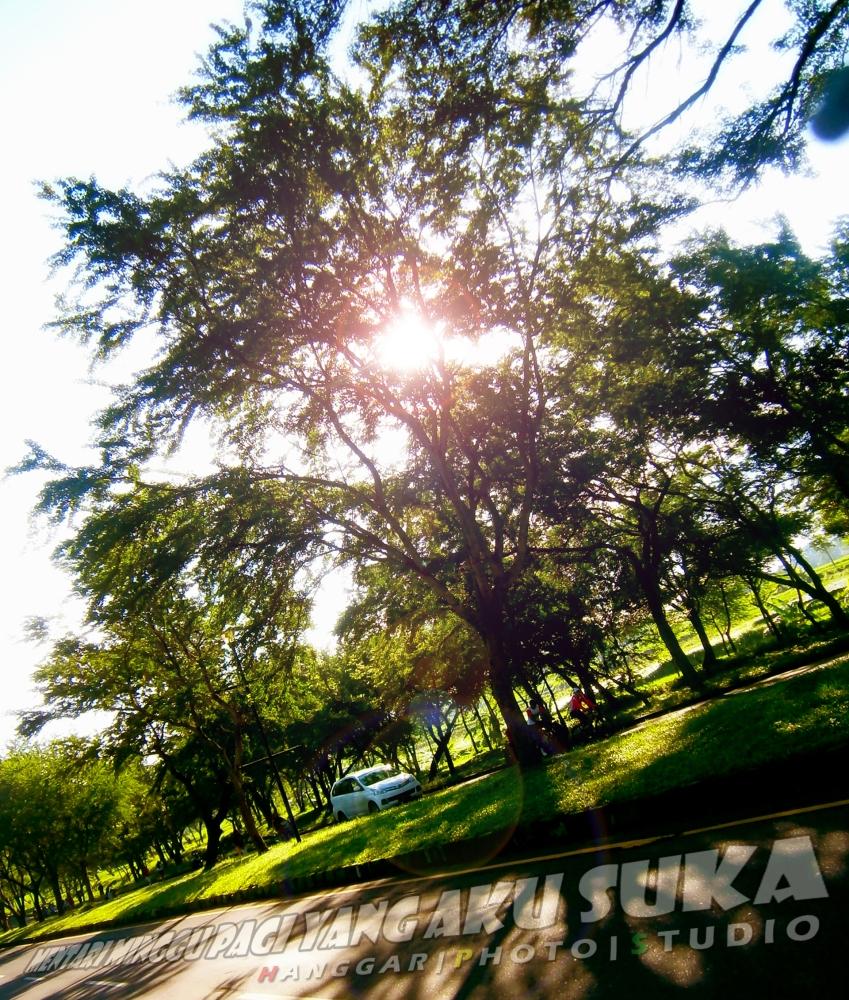 Art of Sun Session 08 - Jogging Sambil Berburu Foto di Taman Dayu (4/6)